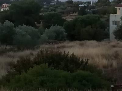 ΜΟΝΟΚΑΤΟΙΚΙΑ 80ΤΜ  140.000ΕΥΡΩ